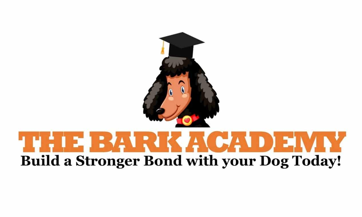 The Bark Academy